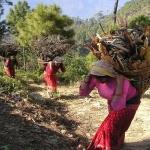 nepal-390_1280-dzikababa