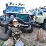 safari-afryka-tramping-dzikababa