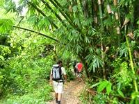 Indonezja-Bali-Komodo