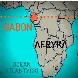 Gabon - Afryka Równikowa, 24.06 - 10.07.2019 (17 dni)