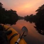 gabon-rafting-goryle-slon-trekking-afryka-dzikababa-wyprawa-ekspedycja